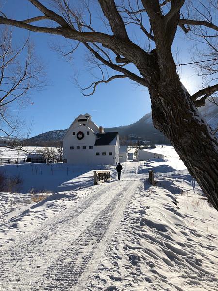 White Snowy Barn
