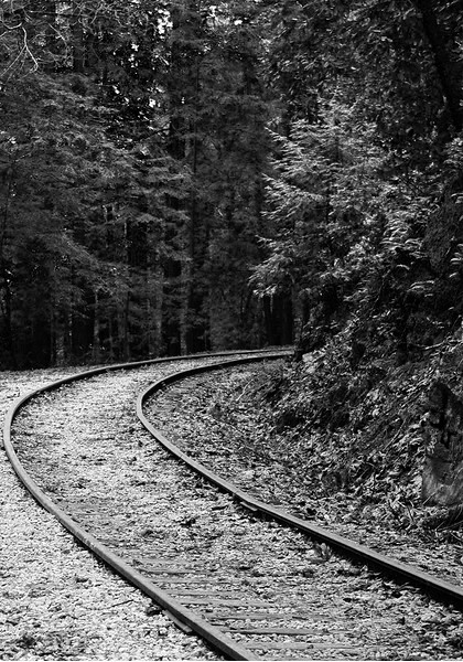 My favorite aspect of this image is the railroad lines almost guiding the eyes throughout the scene.