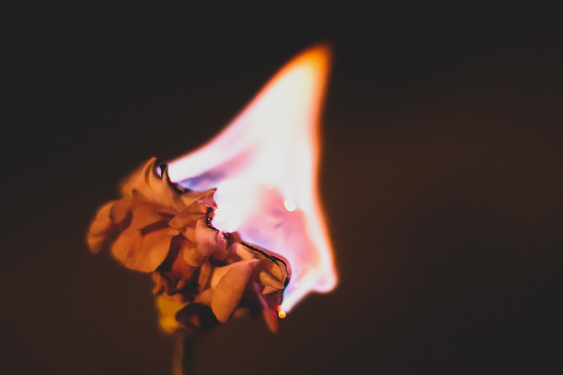 Lone Flame
