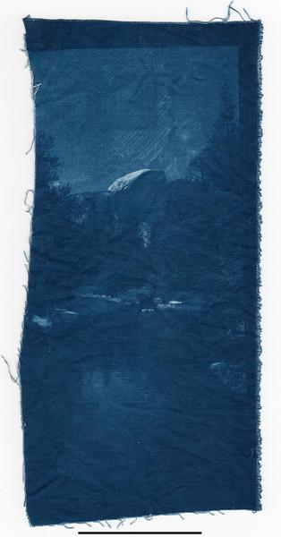 1st Cyanotype Attempt