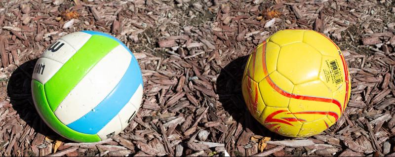 volleyball v soccer