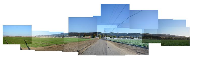 Street Panograph