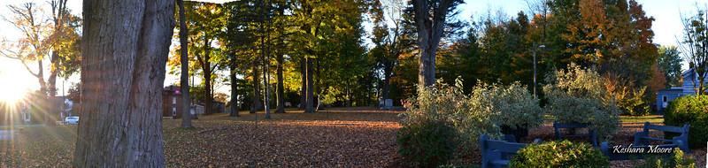Fall Panoramic