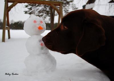 hrucker_winter