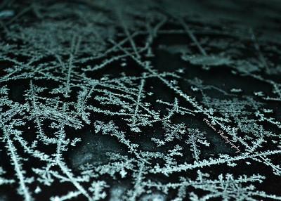 smoran_winter