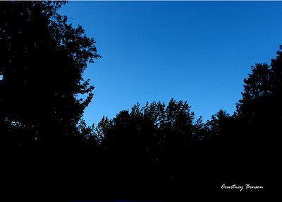 Cbenson_silhouette