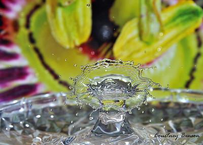 Cbenson_waterdrop
