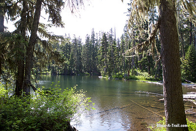 Hiking the Pacific Crest Trail near White Pass