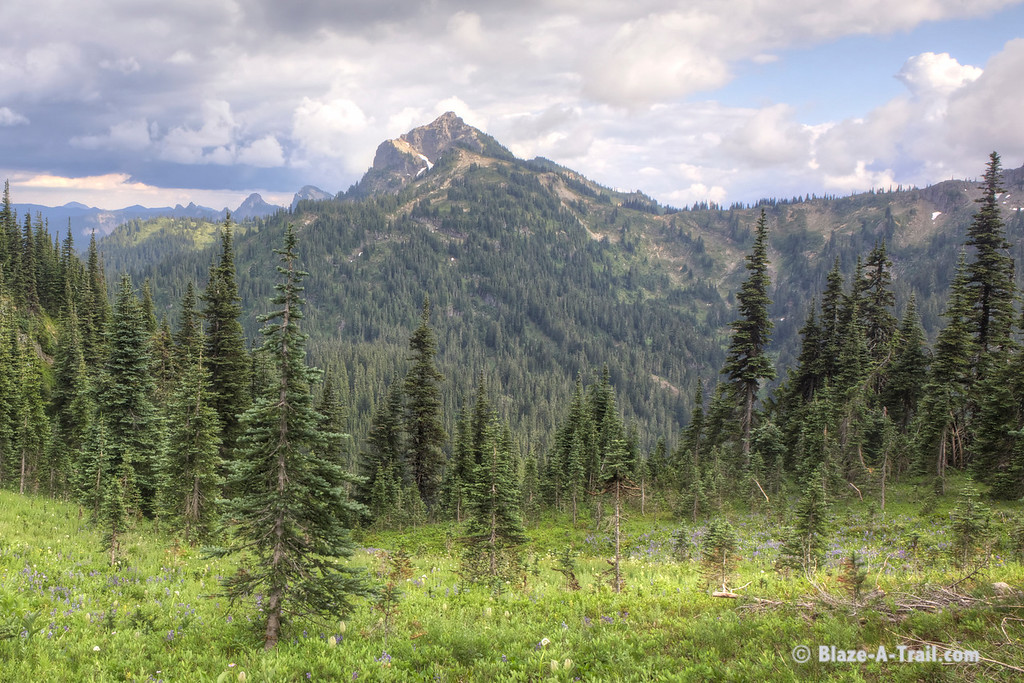 Naches Loop Trail at Chinook Pass, Mt. Rainier National Park  (August 2013)