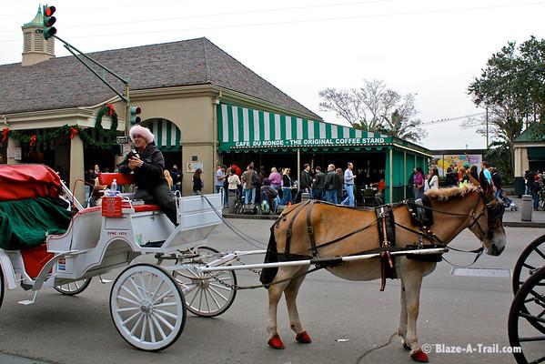 Cafe Du Monde, New Orleans (November 2009)