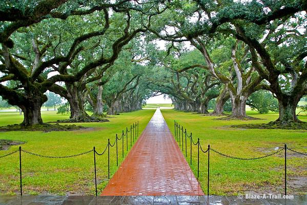 Oak Alley Plantation, Louisiana (November 2009)