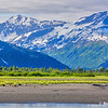 Kenai River Fishing Trip, Alaska (July 2017)