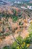 Steel Creek region of Upper Buffalo Wilderness Area in northwest Arkansas - 2 - 72 ppi-2