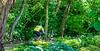 Biker(s) on Razorback Regional Greenway in Bentonville, Arkansas - _D5A0526 - 72 ppi-3