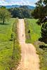 Biker on CR 2545, 6 miles south of Marble, ACA's Northwest Loop - C1_1C30019 - 72 ppi