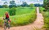 Biker on CR 2545, 6 miles south of Marble, ACA's Northwest Loop - C1_1C30059-Edit - 72 ppi-2