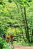 B nc heintooga 1 - ORps - 72 dpi - Heintooga Trail in Great Smoky Mountains National Park in North Carolina