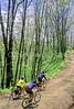 B nc heintooga 11 - ORps - 72 dpi - Heintooga Trail in Great Smoky Mountains National Park in North Carolina