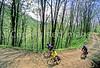 B nc heintooga 10 - ORps - 72 dpi - Heintooga Trail in Great Smoky Mountains National Park in North Carolina