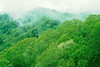Blue Ridge Pkwy - 8 - 72 dpi_-L - Great Smoky Mountains NP
