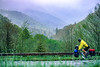 Touring cyclist in Great Smoky Mountains National Park, nearing Newfound Gap - 9 - 72 ppi