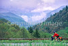 Touring cyclist in Great Smoky Mountains National Park, nearing Newfound Gap - 1 - 72 ppi
