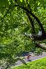 Blue Ridge Bliss-Skyline Drive - D6-C2-0092 - 72 ppi