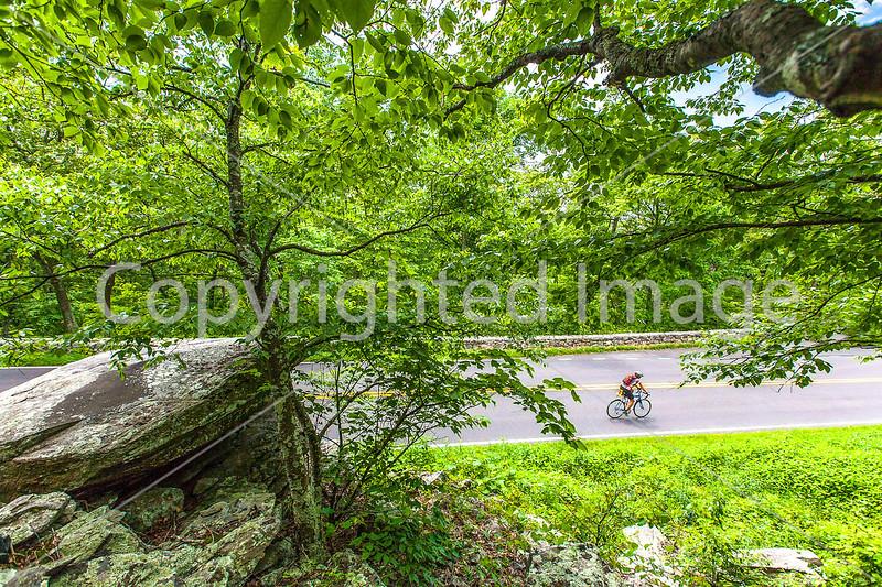 Blue Ridge Bliss-Skyline Drive - D6-C2-0070 - 72 ppi