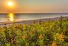 Cape Cod - Sunrise - 72 ppi - #3