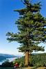 Tourer in Columbia Gorge east of Portland, Oregon - 2 - 72 ppi