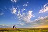 Lewis & Clark - Cyclist near Chamberlain, South Dakota, on Missouri River - 3 - 72 ppi