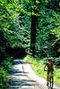 Cyclist in Washington state's North Cascades National Park - B wa cascades 2 - 72 dpi