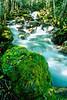 North Cascades National Park in Washington state - N wa cascades 2 - 72 dpi