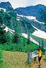 Cyclist in Washington state's North Cascades National Park - B wa cascades 3 - 72 dpi