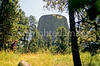 Devils Tower Nat  Monument in Wyoming - 7 - 72 dpi