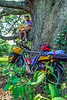 Cyclist taking break with Adventure Cycling's Southern Tier map - 1-Edit - 72 ppi