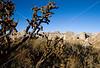 N nm salinas 19 - ORps - Gran Quivira Ruins at Salinas Pueblo Missions Nat'l Monument in New Mexico - 72 dpi