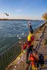 Cyclist feeding seagulls at Buffalo, New York, waterfront