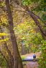 UGRR rider in Cuyahoga Valley Nat  Park, Ohio -0079 - 72 ppi