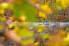 UGRR rider in Cuyahoga Valley Nat  Park, Ohio -0230 - 72 ppi