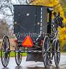 Amish buggy in Mesopotamia, Ohio -0339 - 72 ppi-2