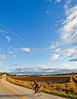 Biker on SR118 near Berkshire in northwest Vermont-C2--0462 - 72 ppi-2