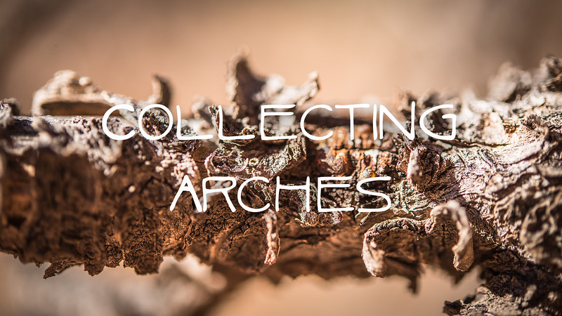 Collecting Arches Slideshow with Music