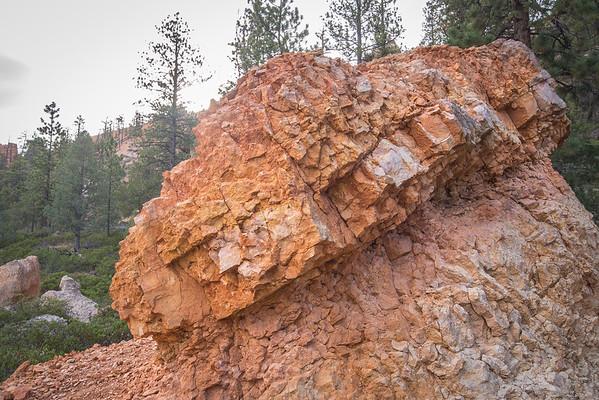 Bumpy Stone