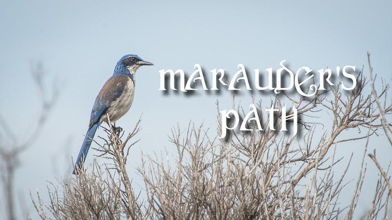 Marauders Path Slideshow with Music