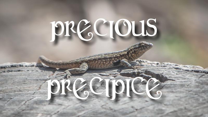 Precious Precipice Slideshow with Music