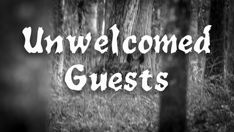 Unwelcomed Guests Slideshow with Music