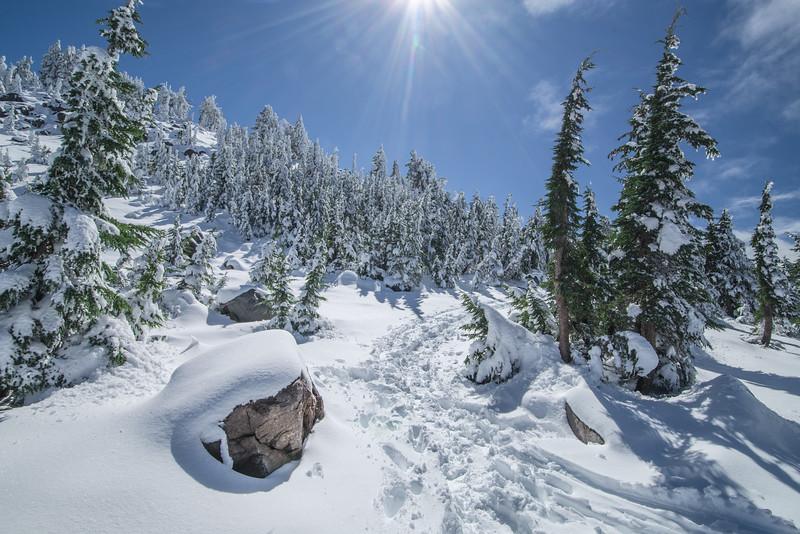 Sun Meets Snow
