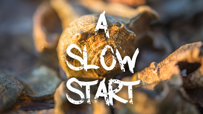 A Slow Start Slideshow with Music