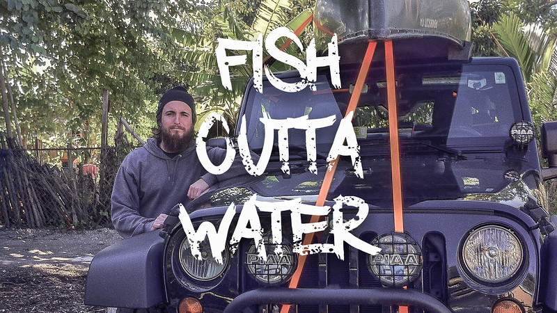 Fish Outta Water Slideshow with Music